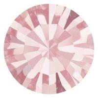 Maxima Chaton pp15 Light Rose F