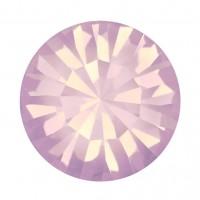 Maxima Chaton pp21 Rose Opal F