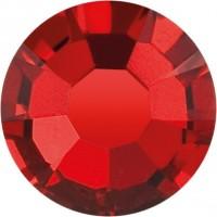 Maxima Rose ss6 Siam F (90090)