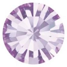 Maxima Chaton ss39 Violet F