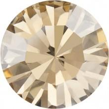 Maxima Chaton ss24 Crystal Golden Honey F