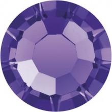 Maxima Rose ss34 Purple Velvet F